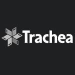 Trachea a.s.